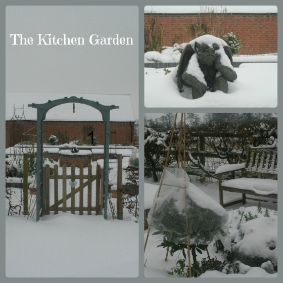 Snow in Kitchen Garden
